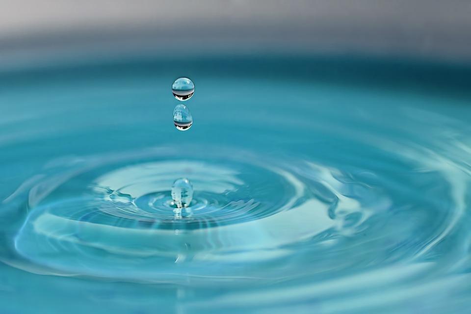 John Ellis Water clears Sewage